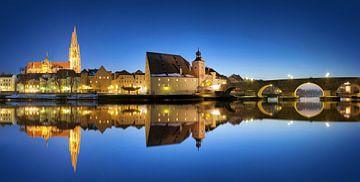 Regensburg Panorama bij het blauwe uur van Thomas Rieger
