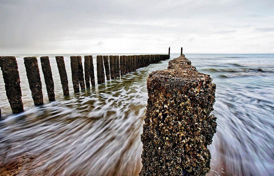 De Zee