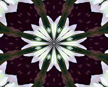 Mandala - Blume des Lebens van Doris Kroos