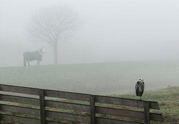 Foggy landscape sur Marcel van Balken
