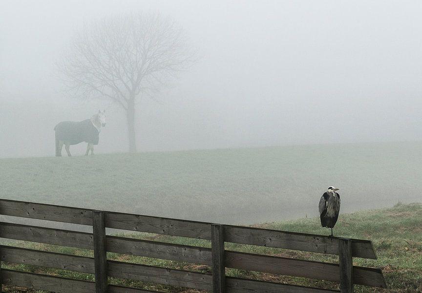 Landschap in de mist van Marcel van Balken
