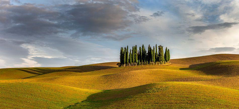 Toscane Torrenieri panorama Italië van Peter Bolman