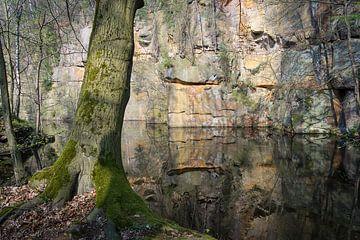 Spiegelung im Steinbruch 4