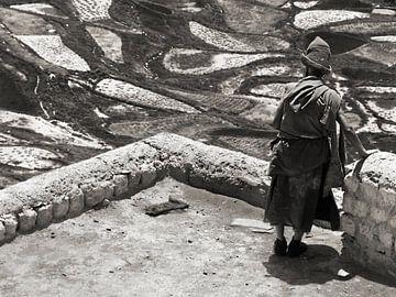 Monnik in Karsha klooster overziet de velden in het dal van Affectfotografie