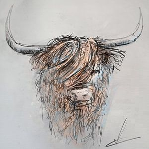 Schotse hooglander - digitaal artwork - inkt pen tekening ingekleurd met bruin grijs en blauw