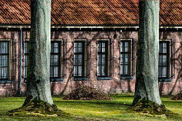 Veenhuizen en bomen die de gevel schaduwvormen geven. van Harrie Muis