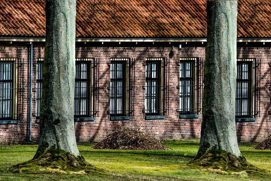 Veenhuizen en bomen die de gevel schaduwvormen geven.