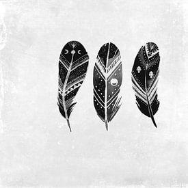 Three feathers von Anne Seltmann