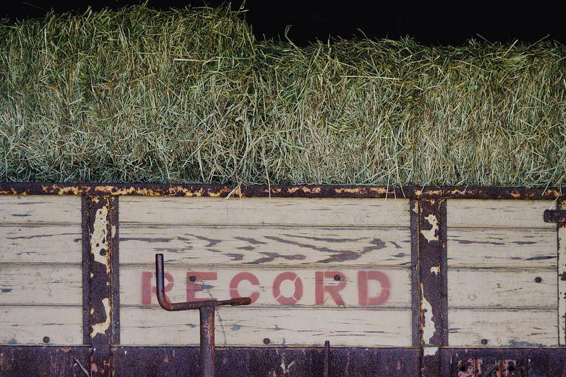 record sur Ann Beckers