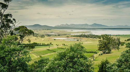 Devil's Corner, wijnmakerij in Tasmanië