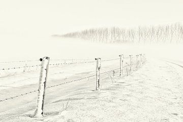 Winterse dag von Ellen Driesse