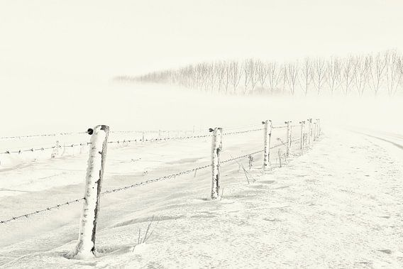 Winterse dag van Ellen Driesse