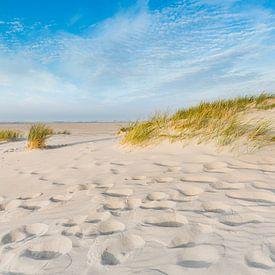 Stranddüne von Ursula Reins