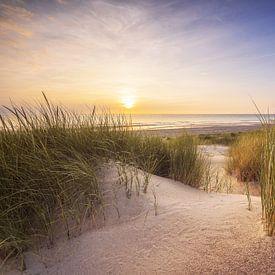 Dunes et plage sur Thom Brouwer