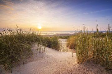 Duin en strand van Thom Brouwer