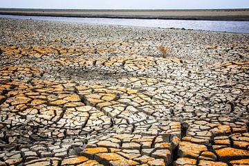 plage sèche sur natascha verbij
