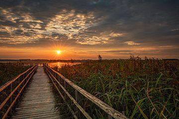 Sonnenaufgang am Federsee von by Stephan Hehler Art Photography