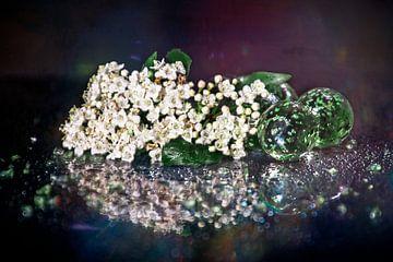 Bloemen op creatieve wijze van Greet Thijs