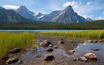 Watervogelmeer, Icefield Parkway, Banff National Park, Alberta, Canada van Alexander Ludwig