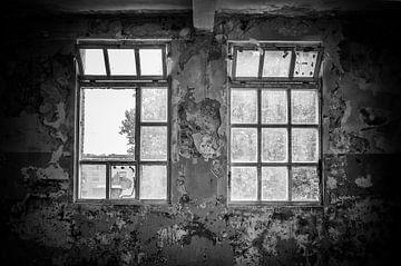 Fenêtres dans l'ancien bâtiment de l'usine sur Gonnie van de Schans