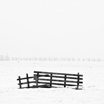 Hek in de sneeuw sur Douwe Schut