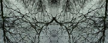Wasser-Spiegel-Reflexion von Christine Nöhmeier