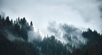 Alpiner Nebel 3 von Bart Rondeel