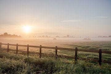 Niederländische Landschaft Sonnenuntergang Sonnenaufgang Wiese und Pferde von Déwy de Wit
