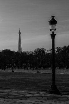 Tower of Paris van Robin Kelderman