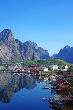 Aussicht auf den Reinefjorden von Reinhard  Pantke