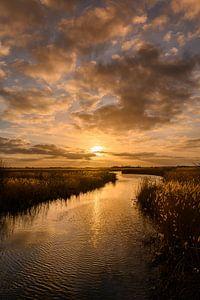 Fields of gold - Gouden zonsondergang (verticaal) van Ilona van Dijk