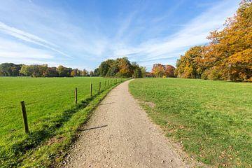 Fußweg zwischen grünen Wiesen mit blauem Himmel im Herbst von Ben Schonewille
