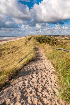 Zandpad over het zeeduin van Fotografie Egmond