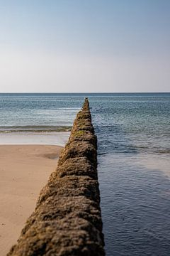 Buhne am Strand bei Kampen von Alexander Wolff