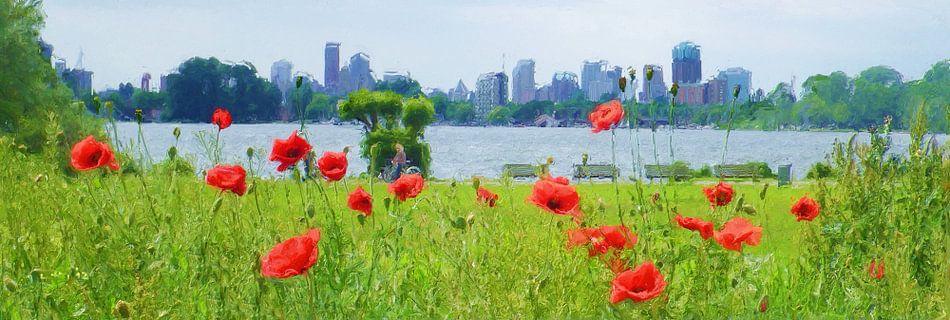 Rotterdam Poppyfields van Frans Jonker