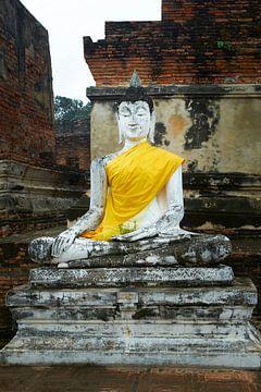 Boeddha beeld ayuthaya van Karel Ham