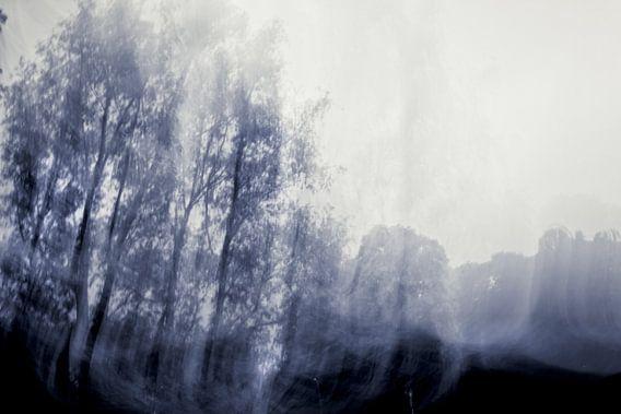 Blue Dutch tranquility van Emma Westers