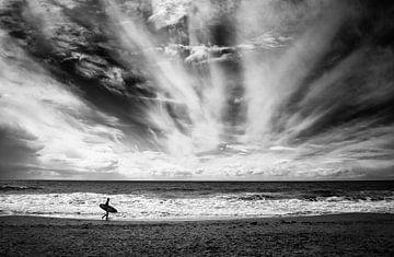 Die Einsamkeit eines Surfers, Lorenzo Grifantini von 1x