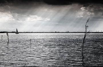 Sint Jacobsladders boven de Westerschelde, Zeeland van René van der Horst