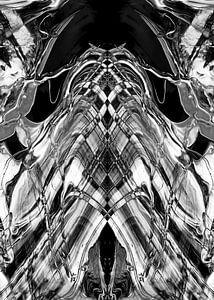 BLACK & WHITE CURIOSITY v3