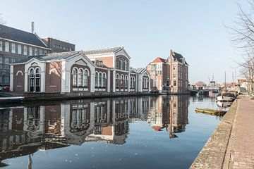 Leiden van Rijk van de Kaa