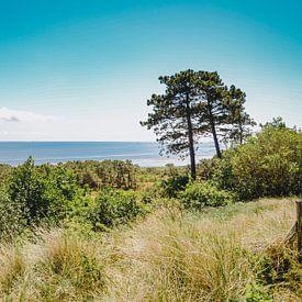 Uitzicht op de Waddenzee bij Vlieland vanaf de Vuurboetsduin van Daphne Groeneveld