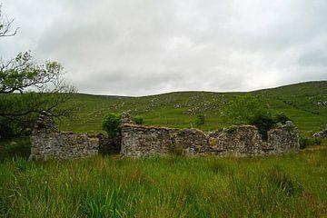 Ruine in Irland von Babetts Bildergalerie