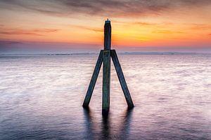 Meerpaal bij dageraad in het Lauwersmeer