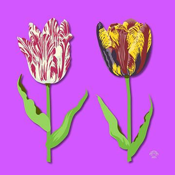 Tulpen van Marco Roling
