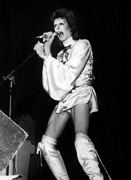 David Bowie auf der Bühne während der Ziggy Stardust Tour von Bridgeman Images
