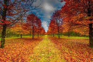 Hefst van