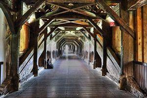 bridge / brug