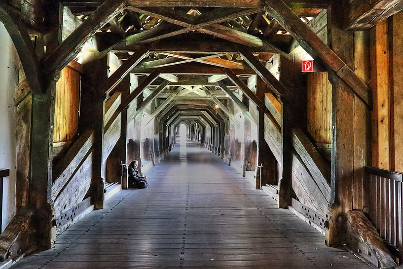 bridge / brug van Hilda booy