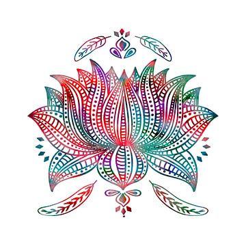 Lotusblume van